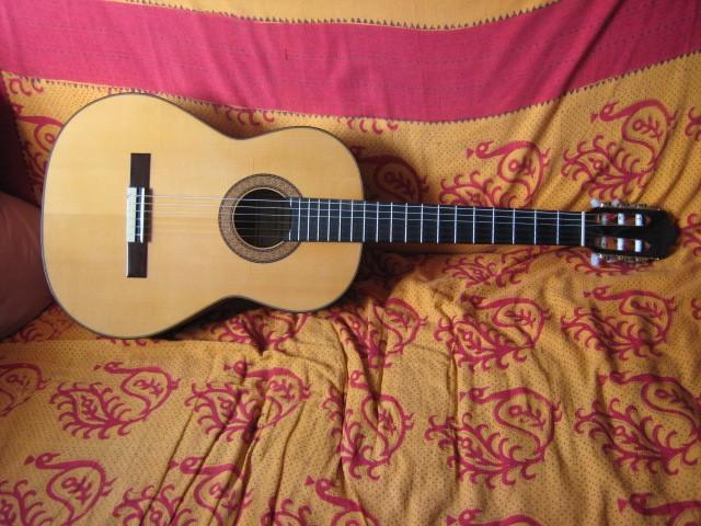 Guitare folk acoustique Sanchez N°30 à vendre