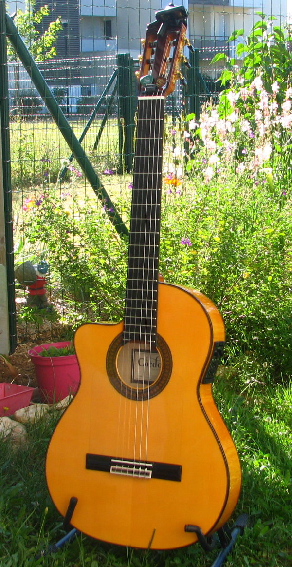 guitare lectro classique cordoba 55 fce vendre. Black Bedroom Furniture Sets. Home Design Ideas