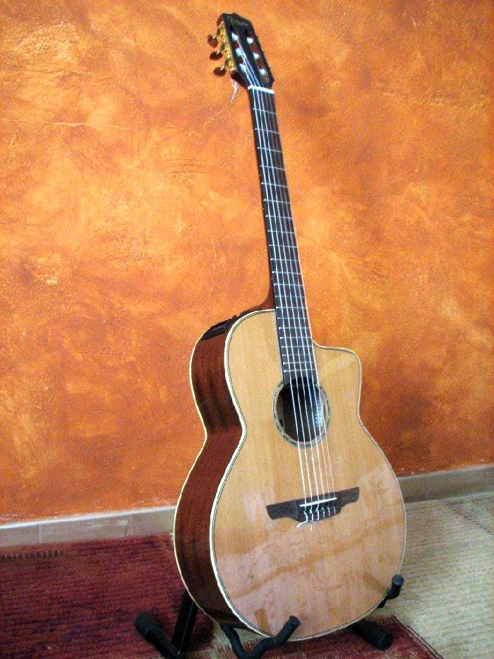 guitare acoustique takamine occasion