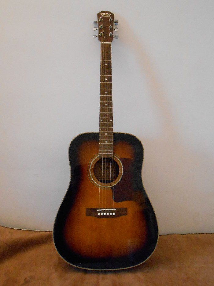 guitare acoustique royson