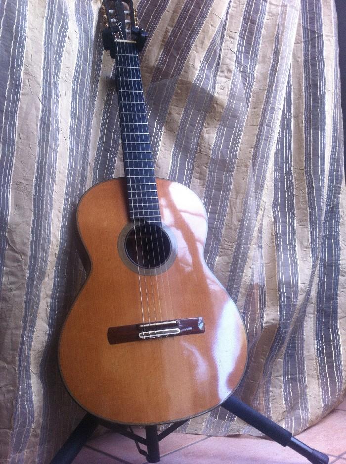 guitare classique pappalardo mod le z vendre. Black Bedroom Furniture Sets. Home Design Ideas